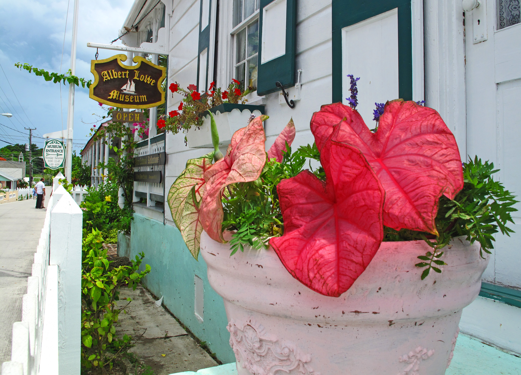 bahamas, abaco, green turtle cay, new plymouth, parliament street, tropical flower, Albert Lowe Museum, little house by the ferry