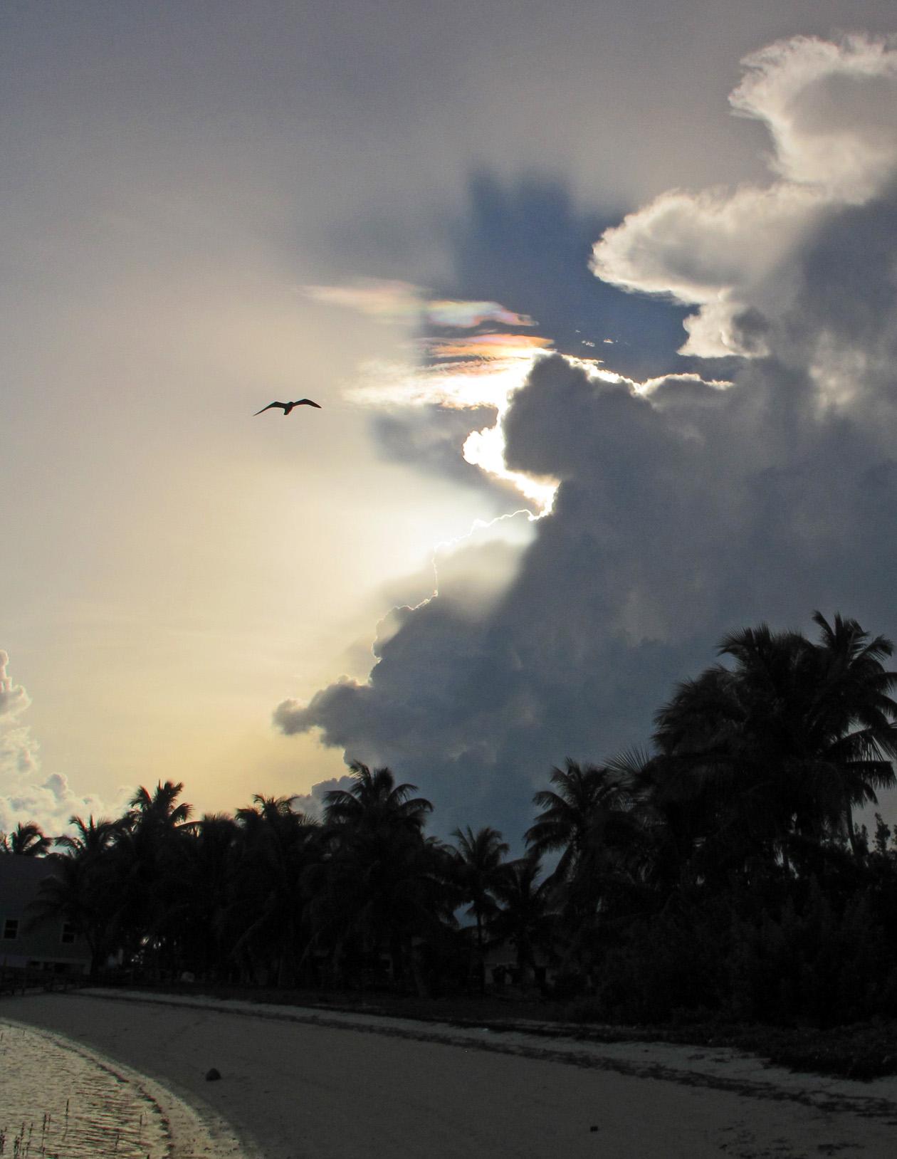 bahamas, abaco, green turtle cay, south beach