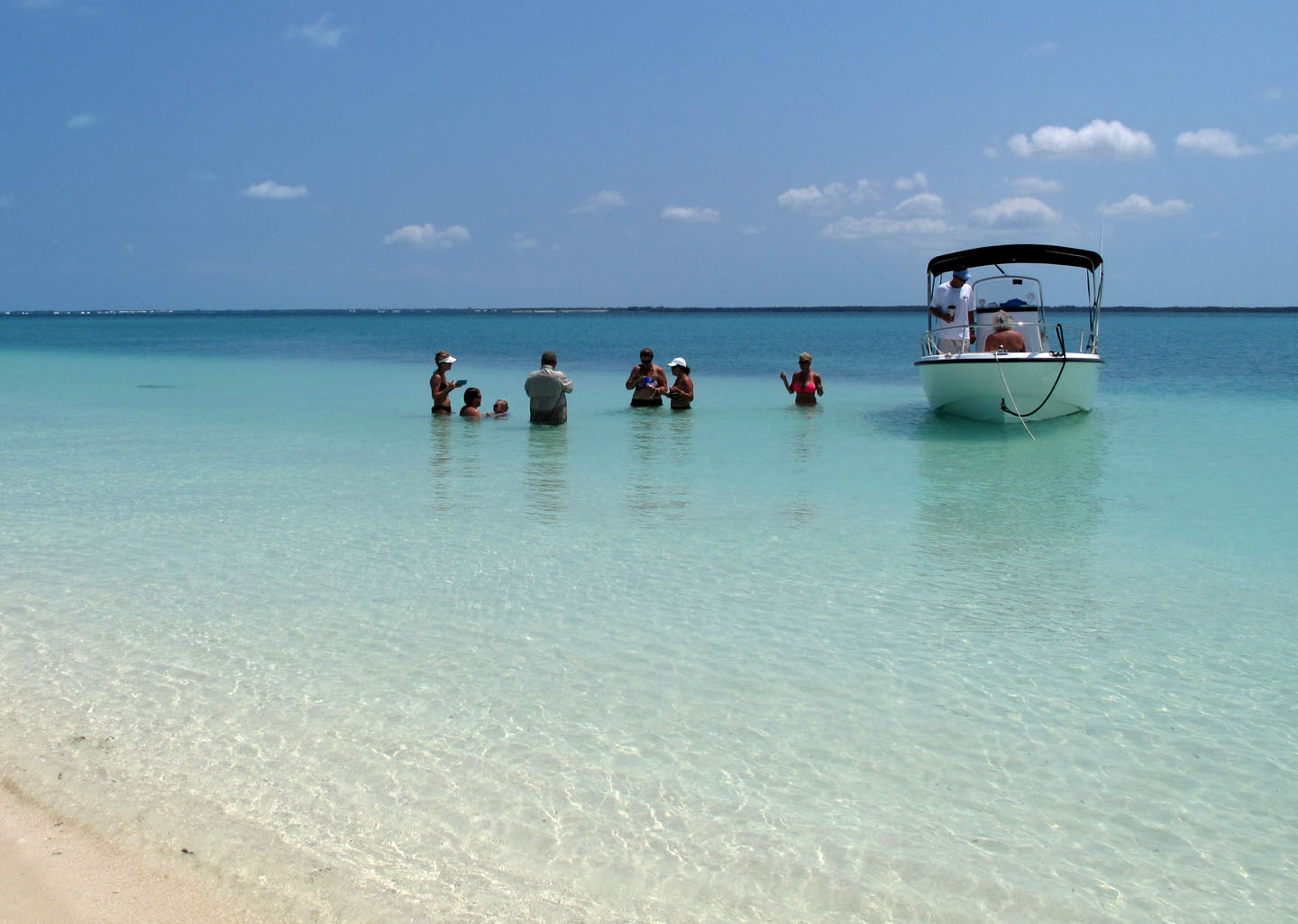 bahamas, abaco, green turtle cay, gillam bay, boating, conch
