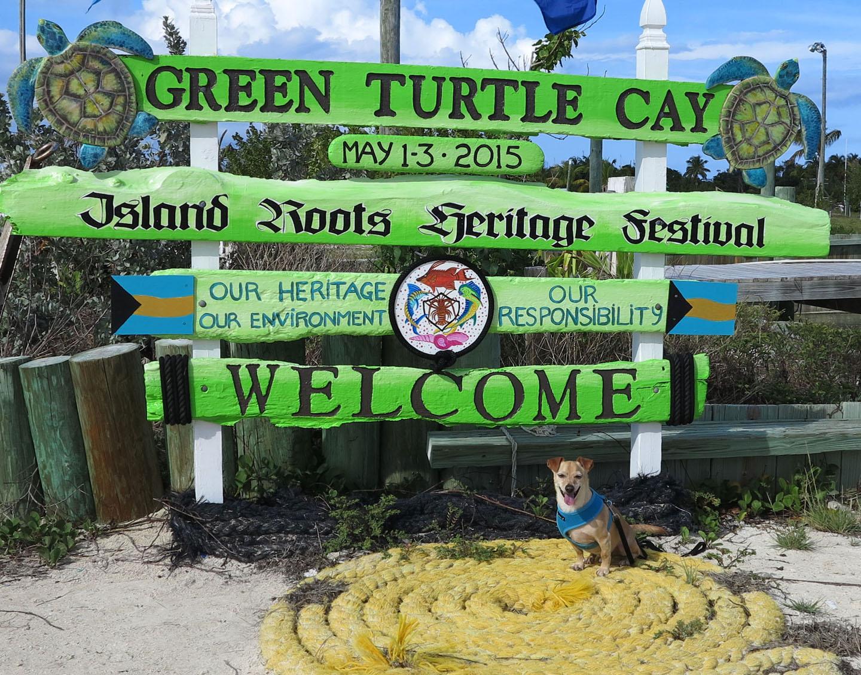 abaco, bahamas, green turtle cay, island roots heritage festival