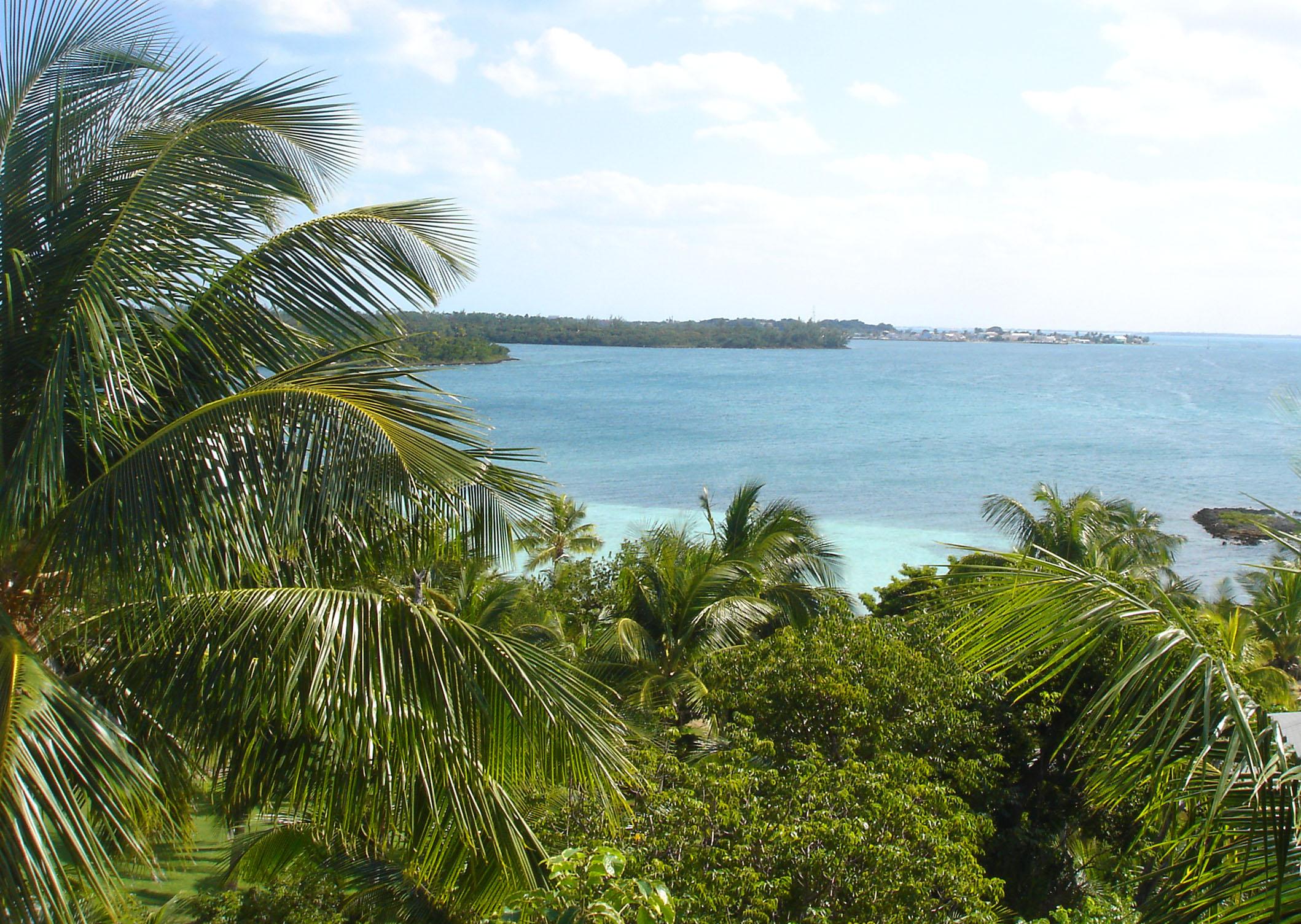 bahamas, abaco, green turtle cay, bluff house