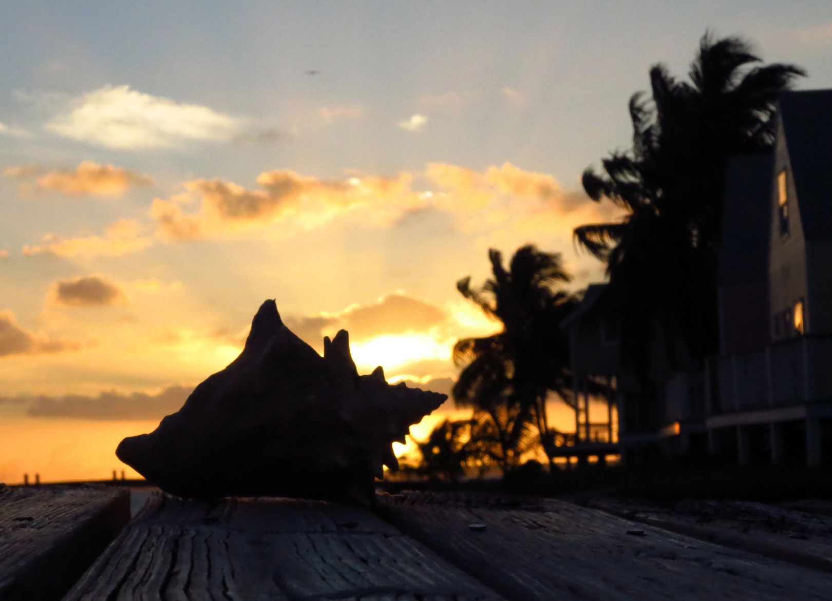 Sunset - Green Turtle Cay, Bahamas