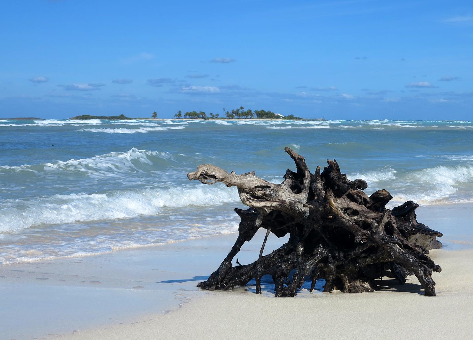 Windy Day at Gillam Bay - Green Turtle Cay, Bahamas