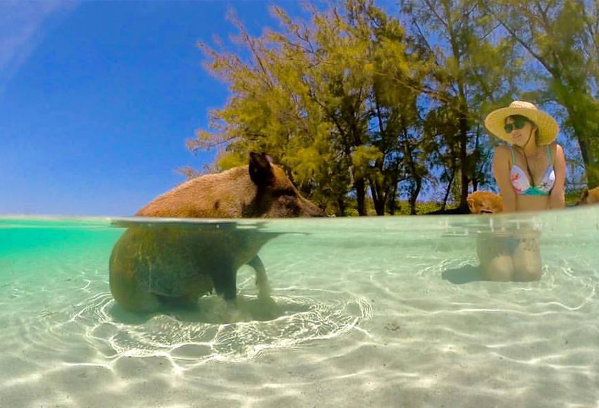 Fresh water comes to Piggyville on No Name Cay, Bahamas