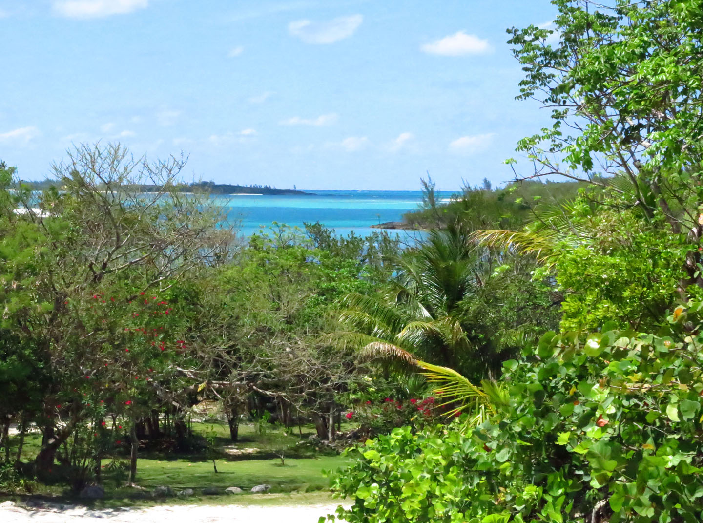 North End, Green Turtle Cay