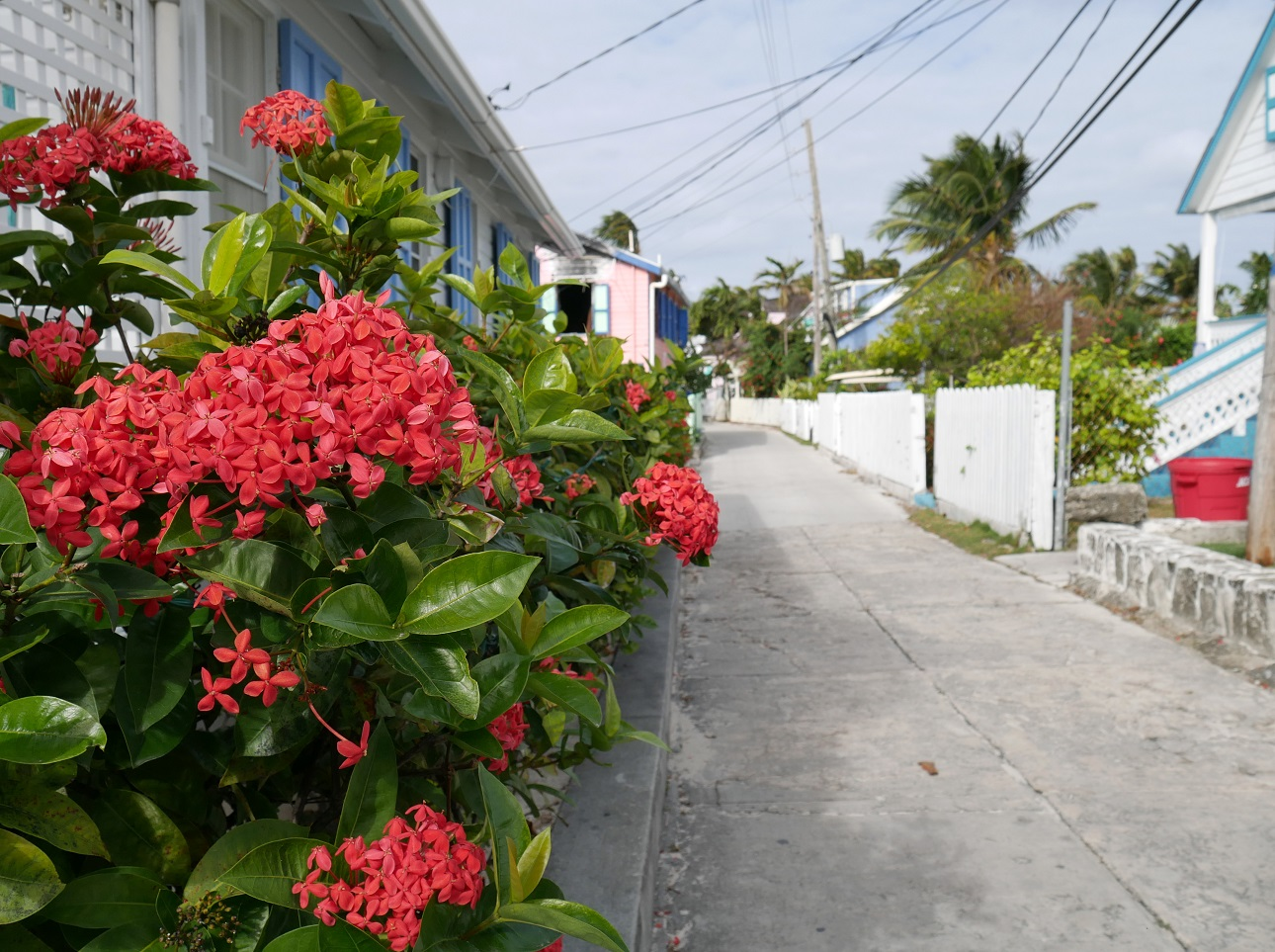 Street scene in Hope Town, Elbow Cay, Bahamas