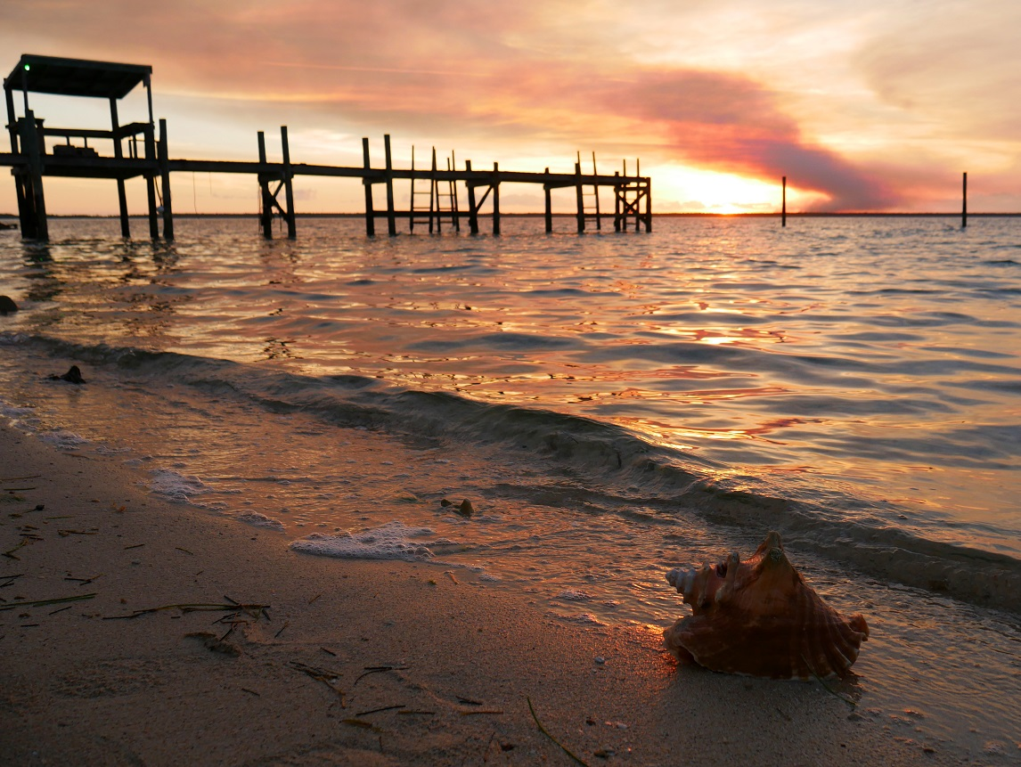 Conch Shell at Sunset - Green Turtle Cay, Bahamas