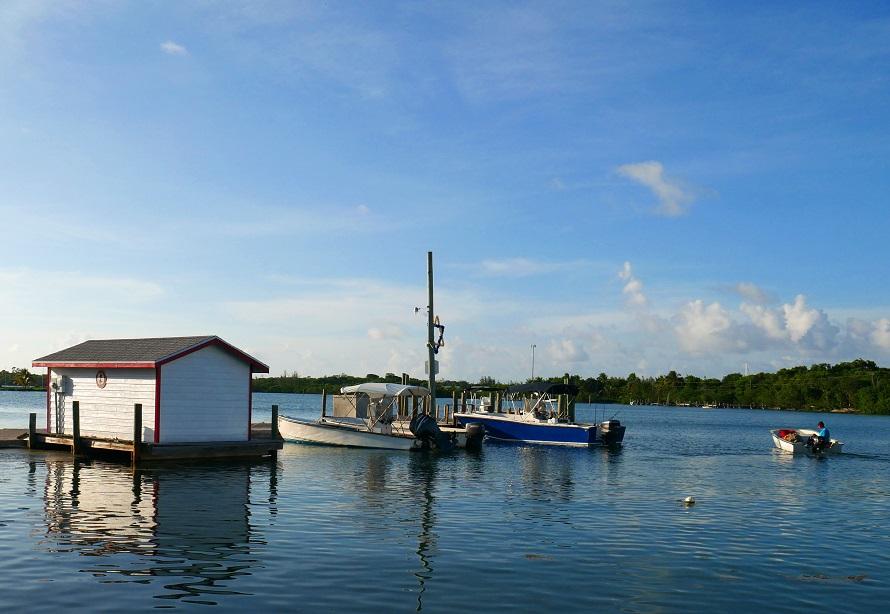 High tide on Settlement Creek, Green Turtle Cay, Bahamas. www.littlehousebytheferry.com