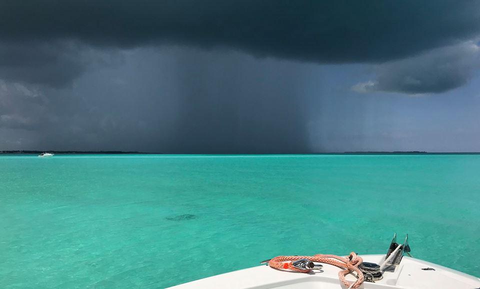 Summer Storm by Mandy Bennett Roberts