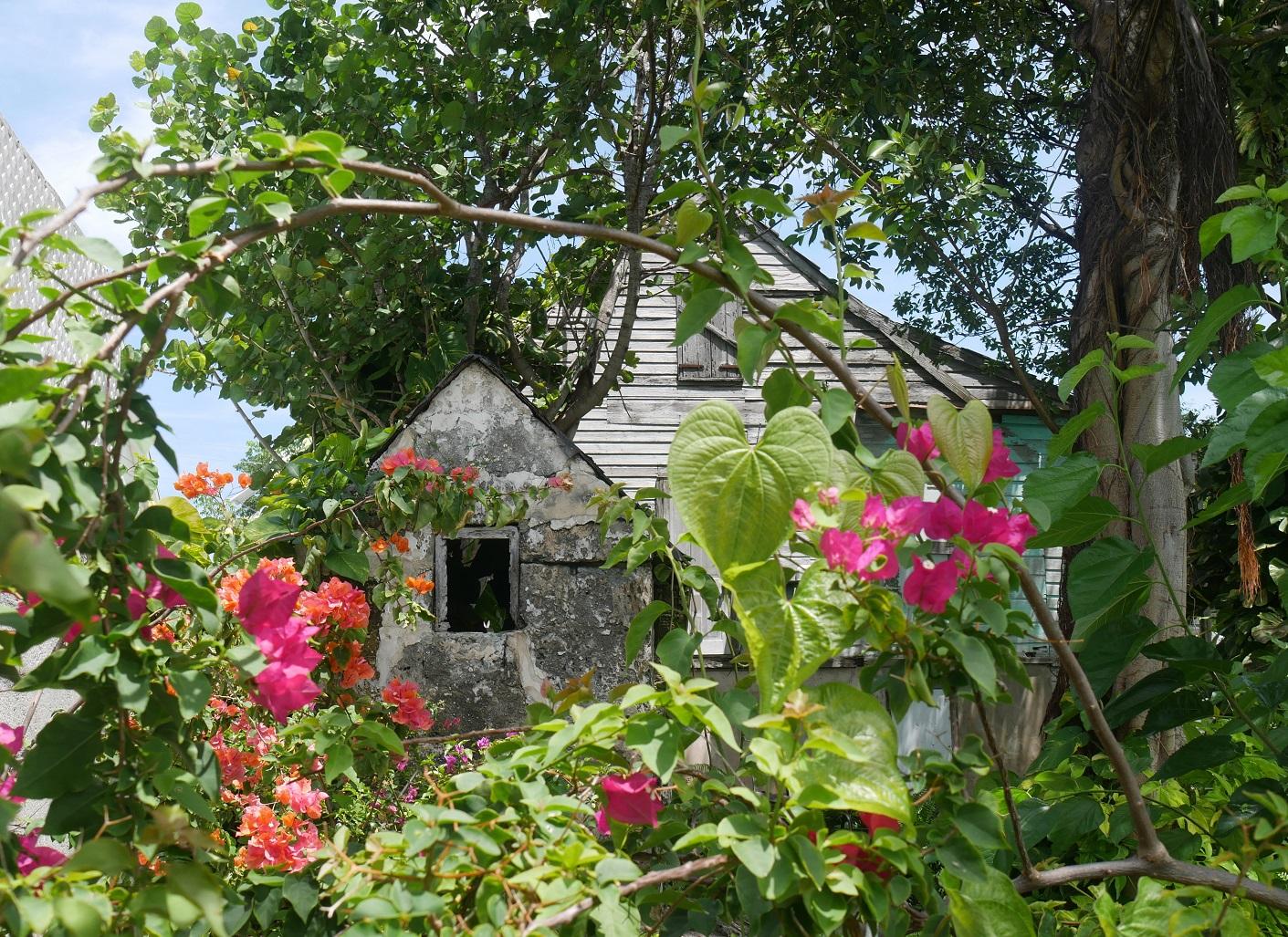 Green Turtle Cay - Abaco Bahamas